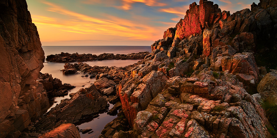 Photograph Away 2 by Magnus Larsson on 500px