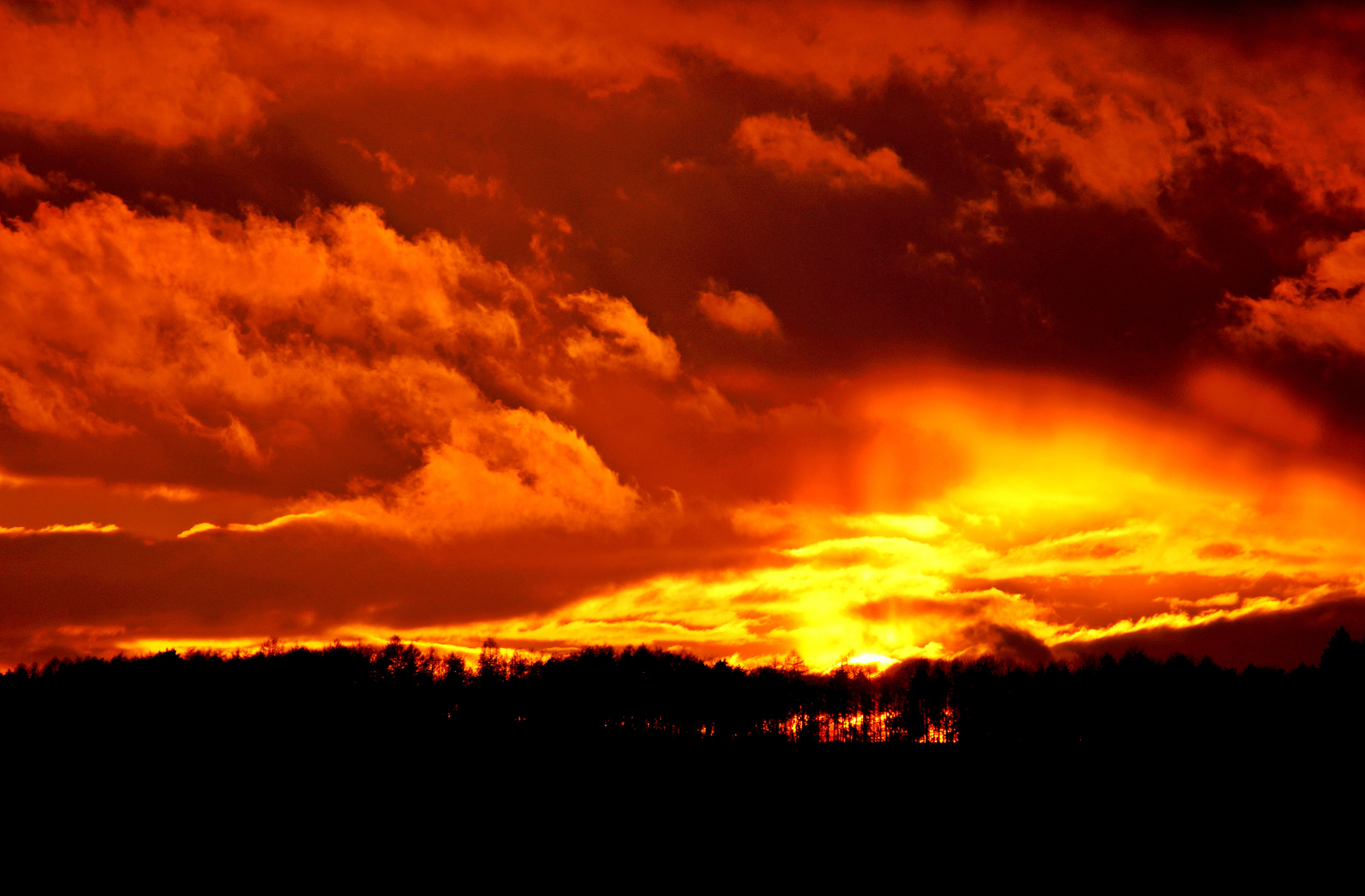 Photograph FIRE by Tom M. on 500px