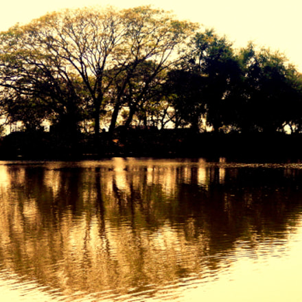 || ReFLecTioN oF D TRee ||, Nikon COOLPIX S570