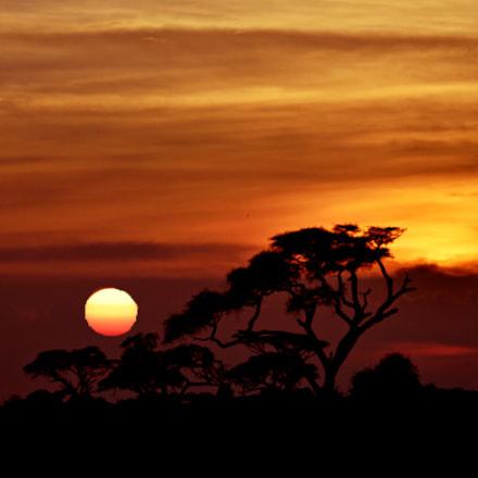 Sunset, Nikon D750, AF-S DX Zoom-Nikkor 55-200mm f/4-5.6G ED