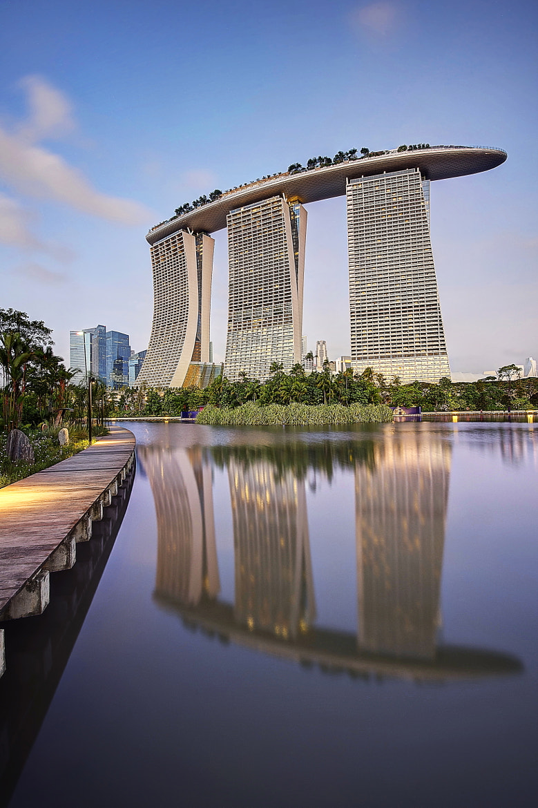 Photograph Gardens by the bay III by Jeff Leong on 500px