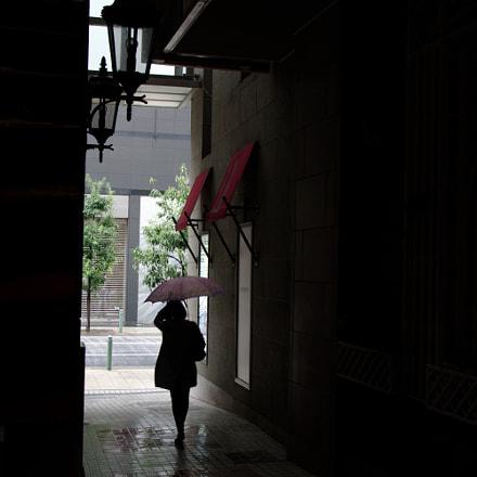Rainy Day, RICOH PENTAX K-3, smc PENTAX-DA* 16-50mm F2.8 ED AL [IF] SDM