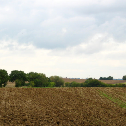 View across fields at, Canon POWERSHOT A550