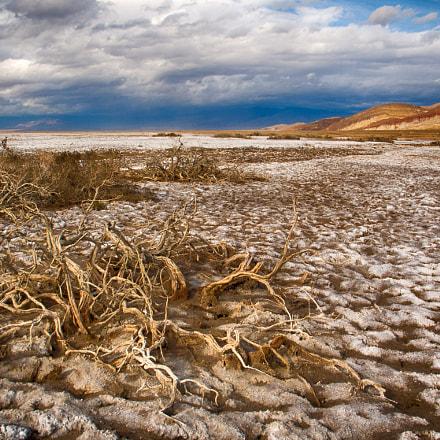 Salty landscape, Canon POWERSHOT G6