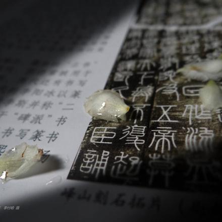 【枇杷 · 汉字】李付明 摄, Sony DSC-HX200