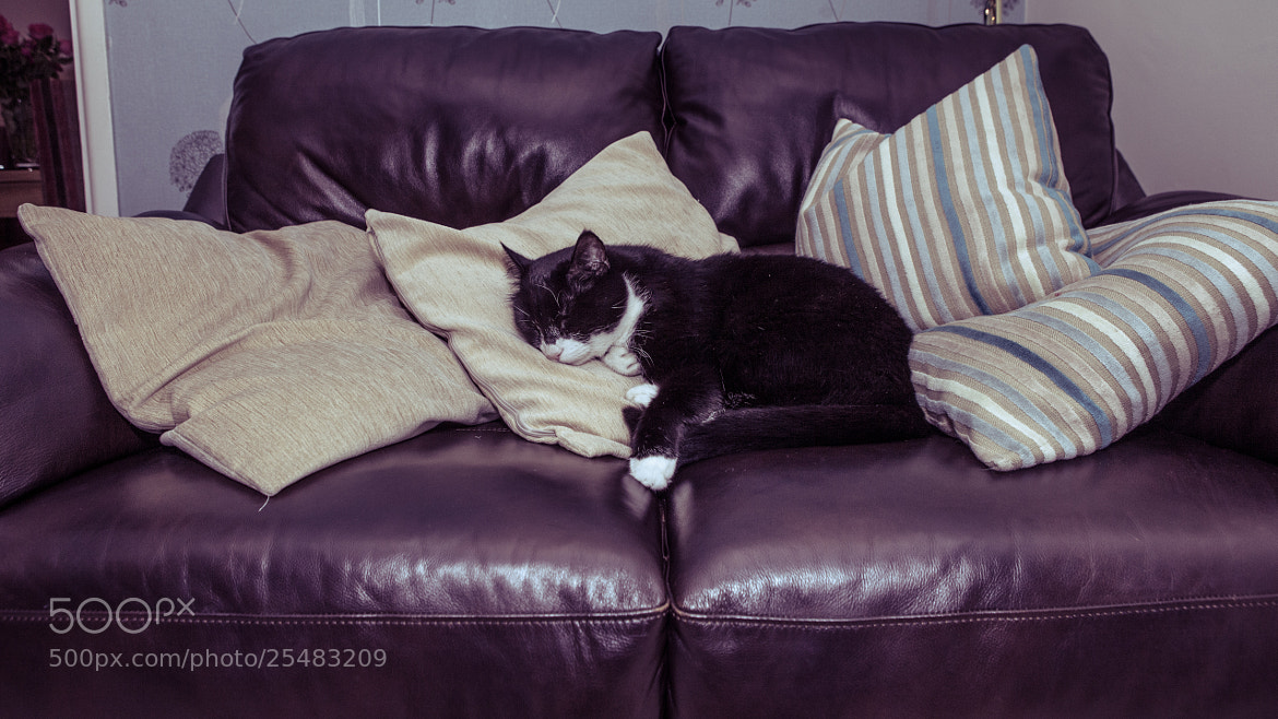 Photograph Sorry this sofa's taken by Photocillin Photography on 500px