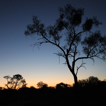 A desert evening, Canon EOS 550D, Canon EF-S 18-55mm f/3.5-5.6 IS STM