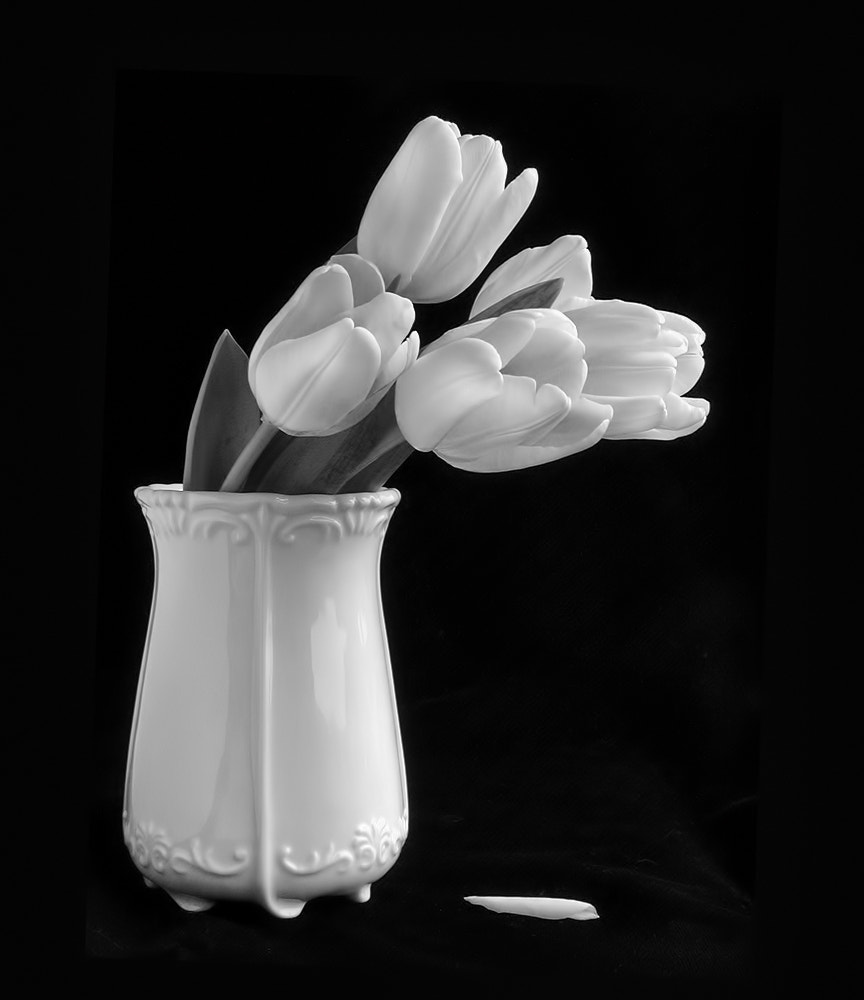 Photograph Tulips in a Vase by Sharon Smith on 500px