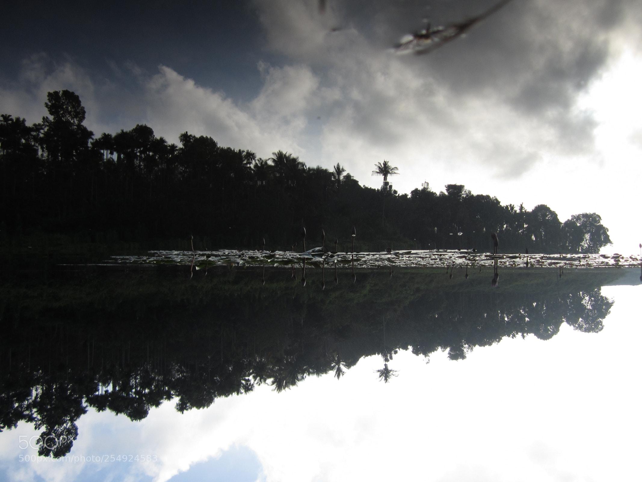 Reflection, Canon IXUS 115 HS