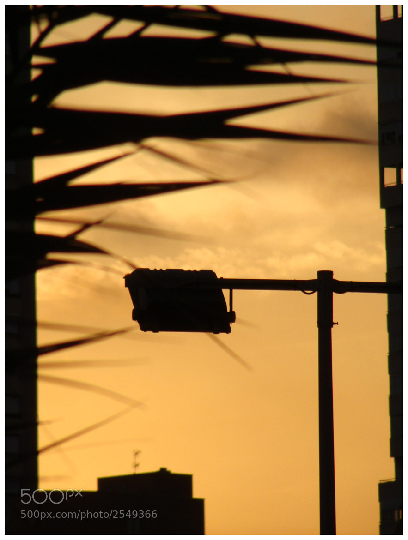 Photograph contraluz by Antonio Garcia on 500px