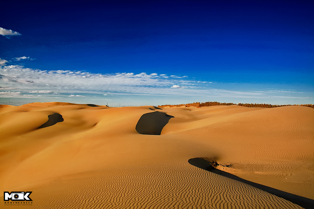 Photograph Golden Sands by Momen Kanech on 500px