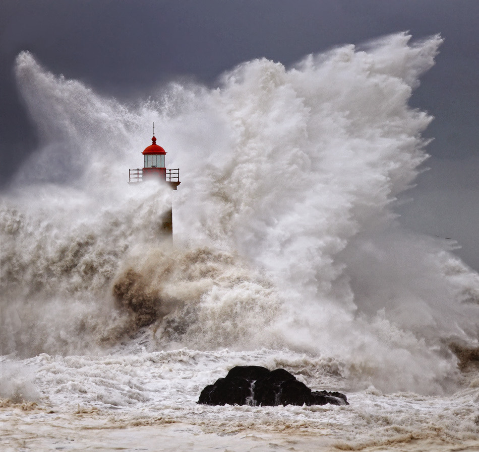 Photograph Enduring the elements 2 by Veselin Malinov on 500px