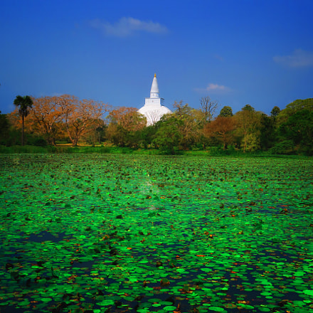 Anuradhapura, Canon POWERSHOT G5 X