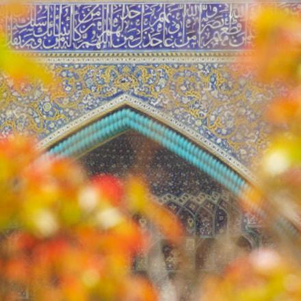 Shah Mosque, Fujifilm FinePix S4000