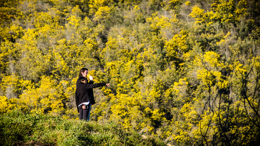 Photograph Lost In Yellow by Alessandro Baffa on 500px