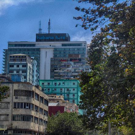 Havana Libre, Panasonic DMC-LZ40
