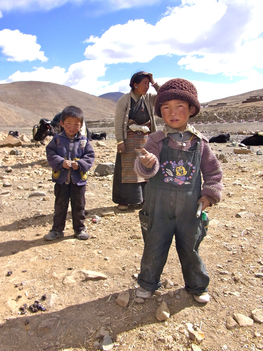 Photograph Nomads by Renee Martin on 500px