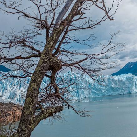 Lago Argentino, Nikon D810