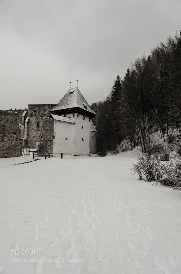Location: Zicka kartuzija