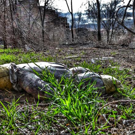 Teddy Bear Dead, Nikon COOLPIX P6000