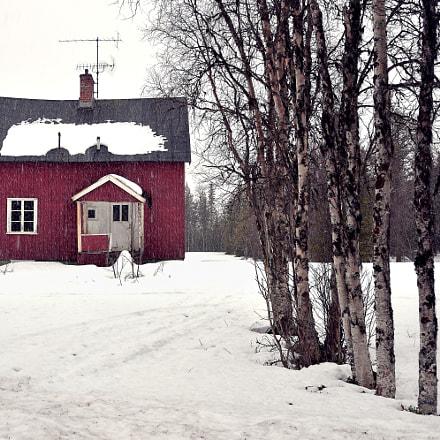Lapland Noir, Nikon D610, Tamron SP 35mm f/1.8 VC
