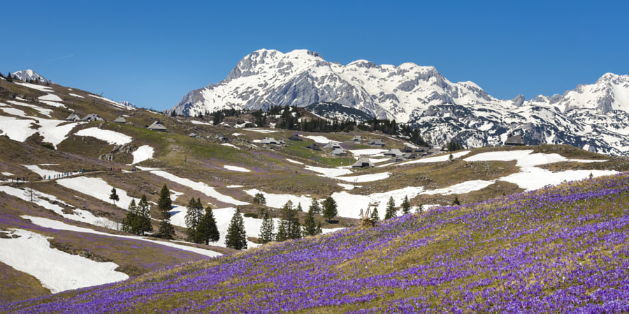 Velika Planina by Jure Batagelj on 500px.com