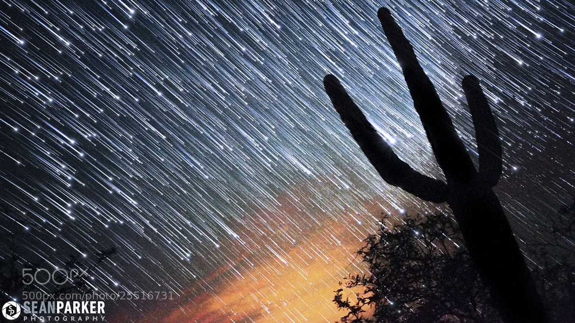 Photograph Comet Star-Trails by Sean Parker on 500px