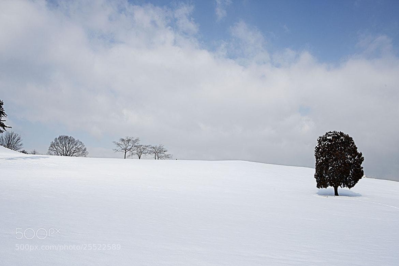 Photograph Alone by Kiwon  Kim on 500px