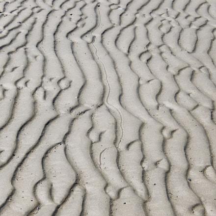 A Snail's Path, Nikon COOLPIX S9600