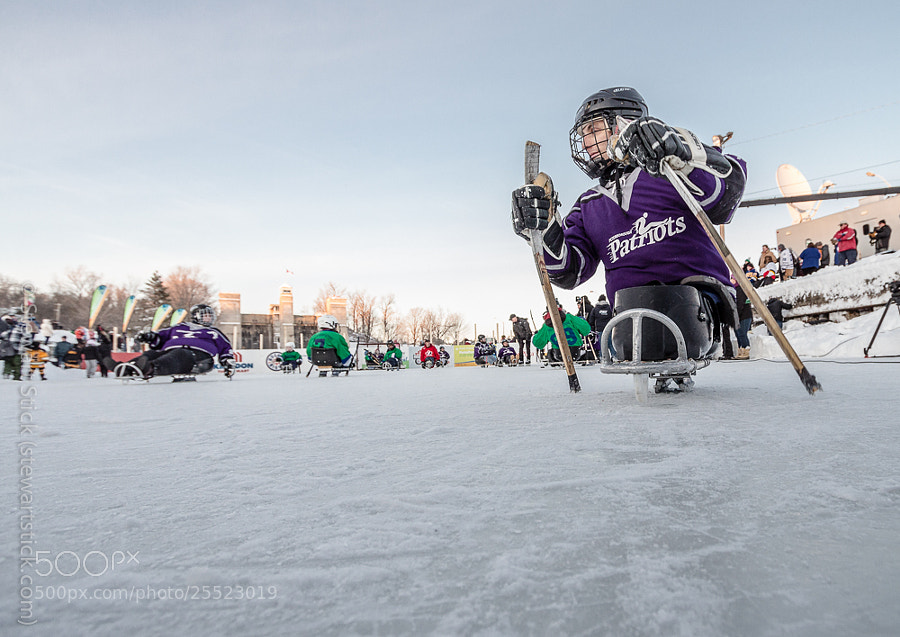 Sledge Hockey by Stewart Stick (stickshots)) on 500px.com