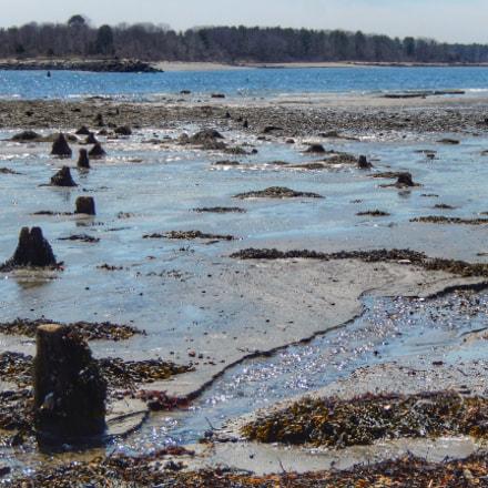 Remains of a Pier, Nikon COOLPIX S9600