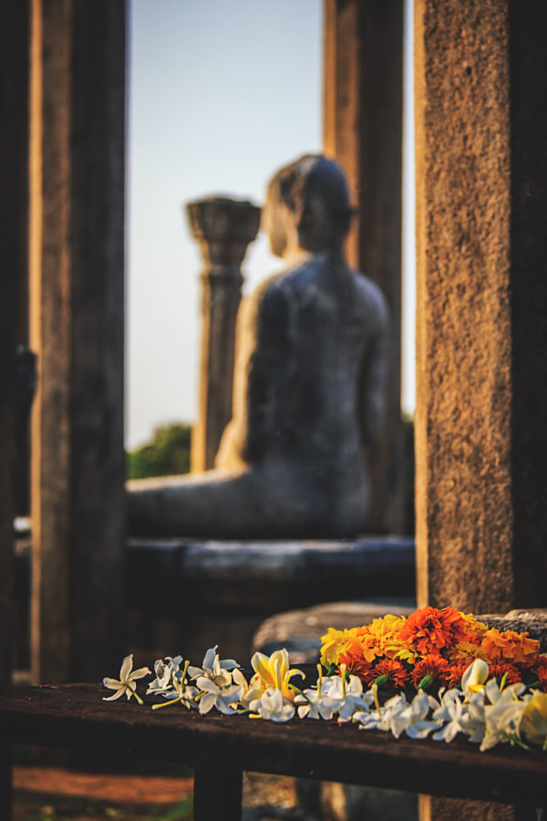 Flowers before the Buddhas #2 by Son of the Morning Light on 500px.com