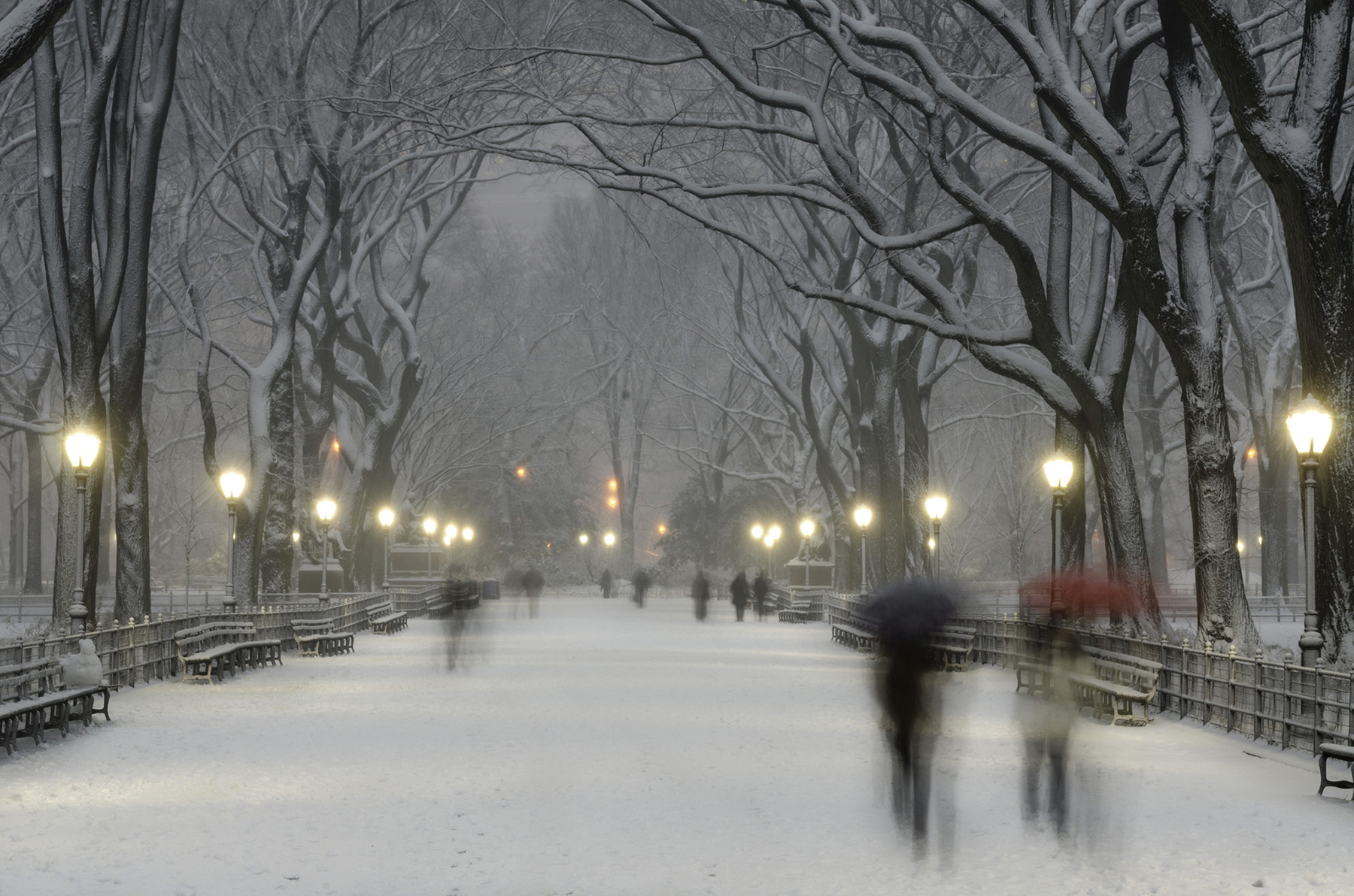 Photograph The Mall Central Park Ghost People  by Weisser  Photography  on 500px