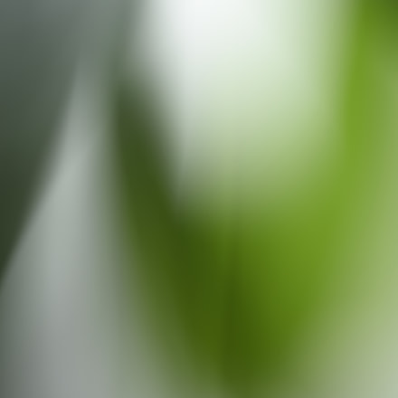 20180426_1101.JPG, Nikon D750, AF Micro-Nikkor 60mm f/2.8