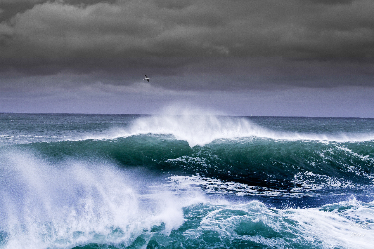 Photograph The wave by Ronan Follic on 500px
