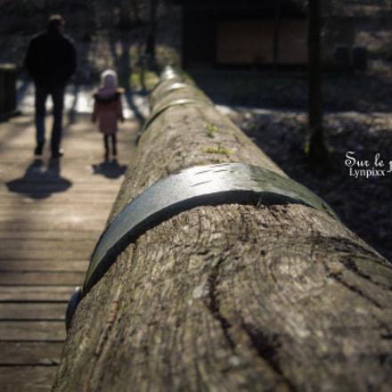 Sur le pont, Nikon COOLPIX S8200