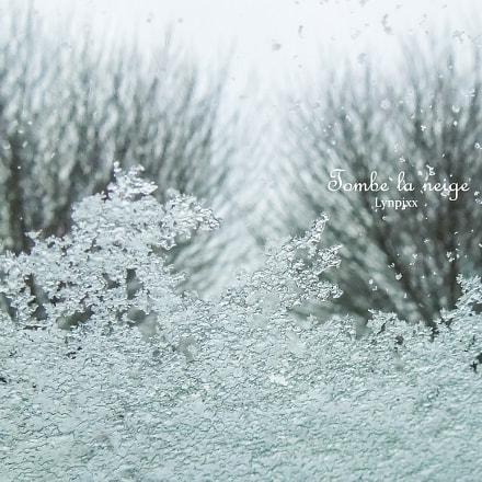 Tombe la neige, Nikon COOLPIX S8200