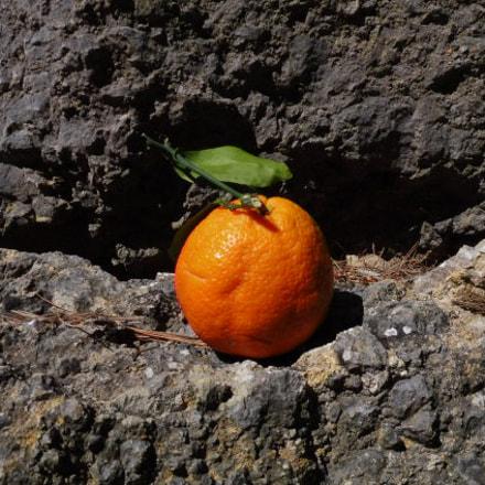 Naranja, Panasonic DMC-TZ58