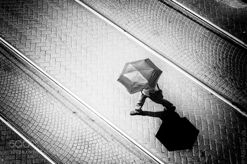 Photograph Umbrella by Niels Linneberg on 500px