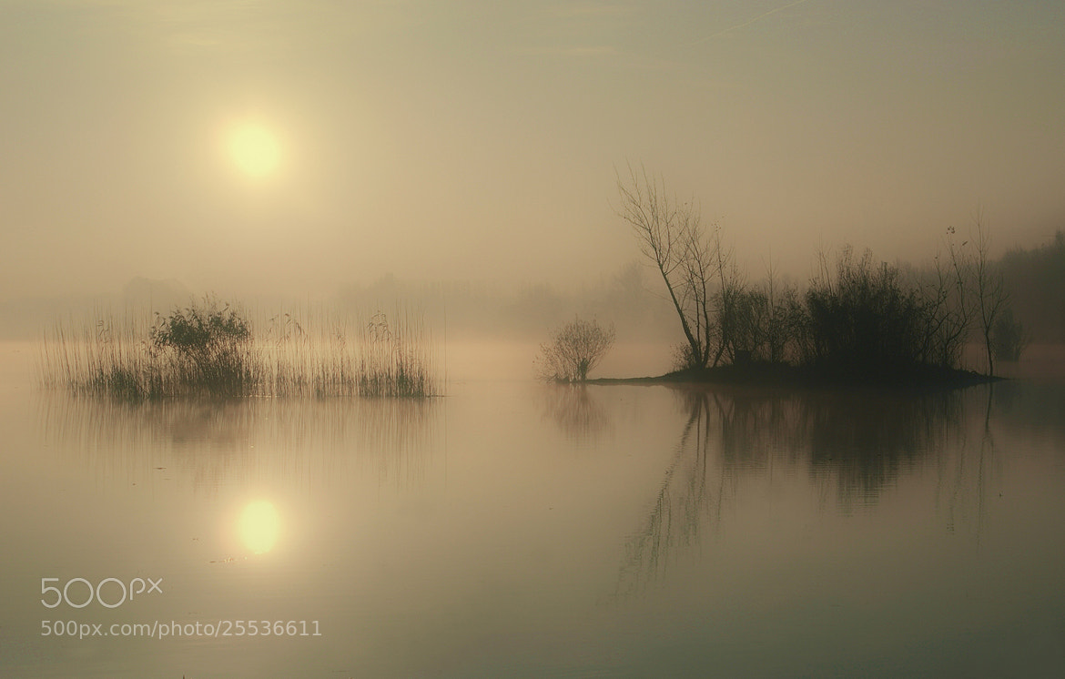 Photograph awakened from a dream by Andy 58 on 500px