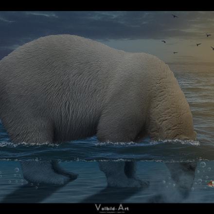 Underwater Bear, Fujifilm FinePix A700