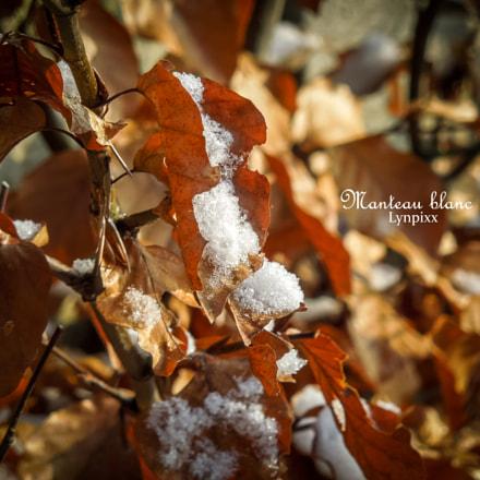 Manteau blanc, Nikon COOLPIX S8200