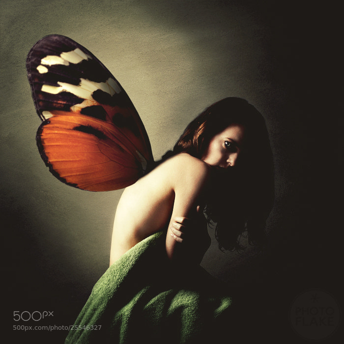 Photograph butterfly phobia by photoflake . on 500px