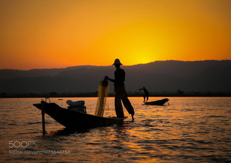 Photograph Golden Silhoutte by Mahesh Krishnamurthy on 500px