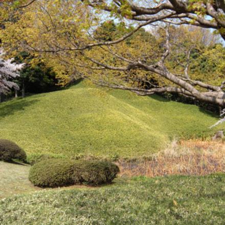 Garden Hill, Nikon COOLPIX S60