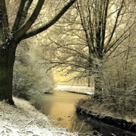 Winter in the Netherlands II by Joost Lagerweij (JoostLagerweij)) on 500px.com