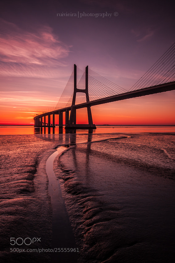 Photograph Paths for the sunrise by Rui Vieira on 500px