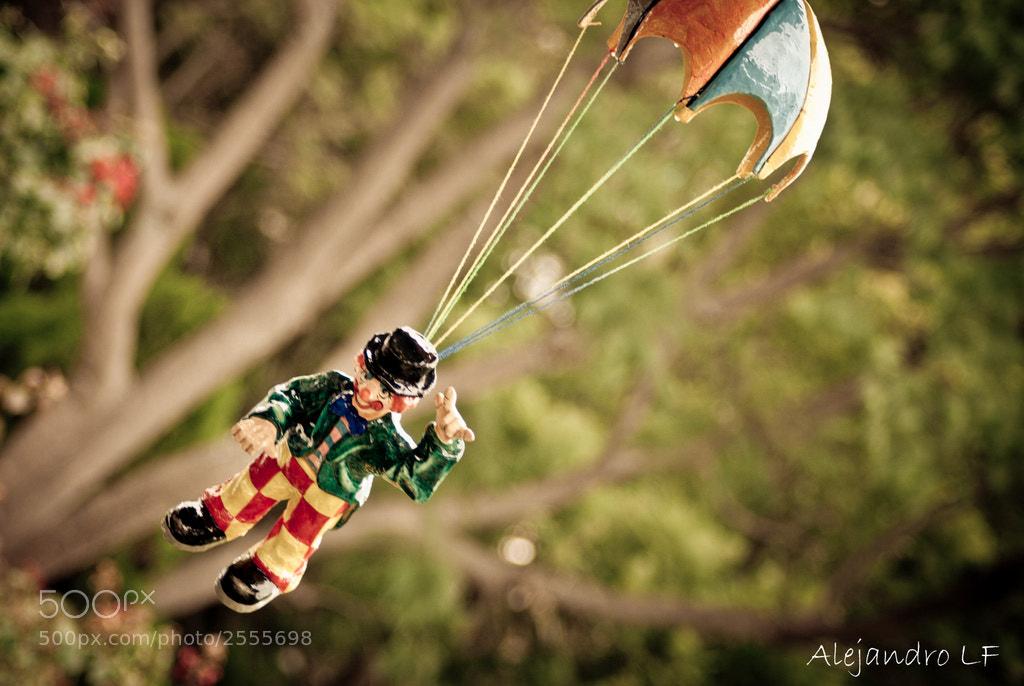 Photograph A volar... by Alejandro L F on 500px