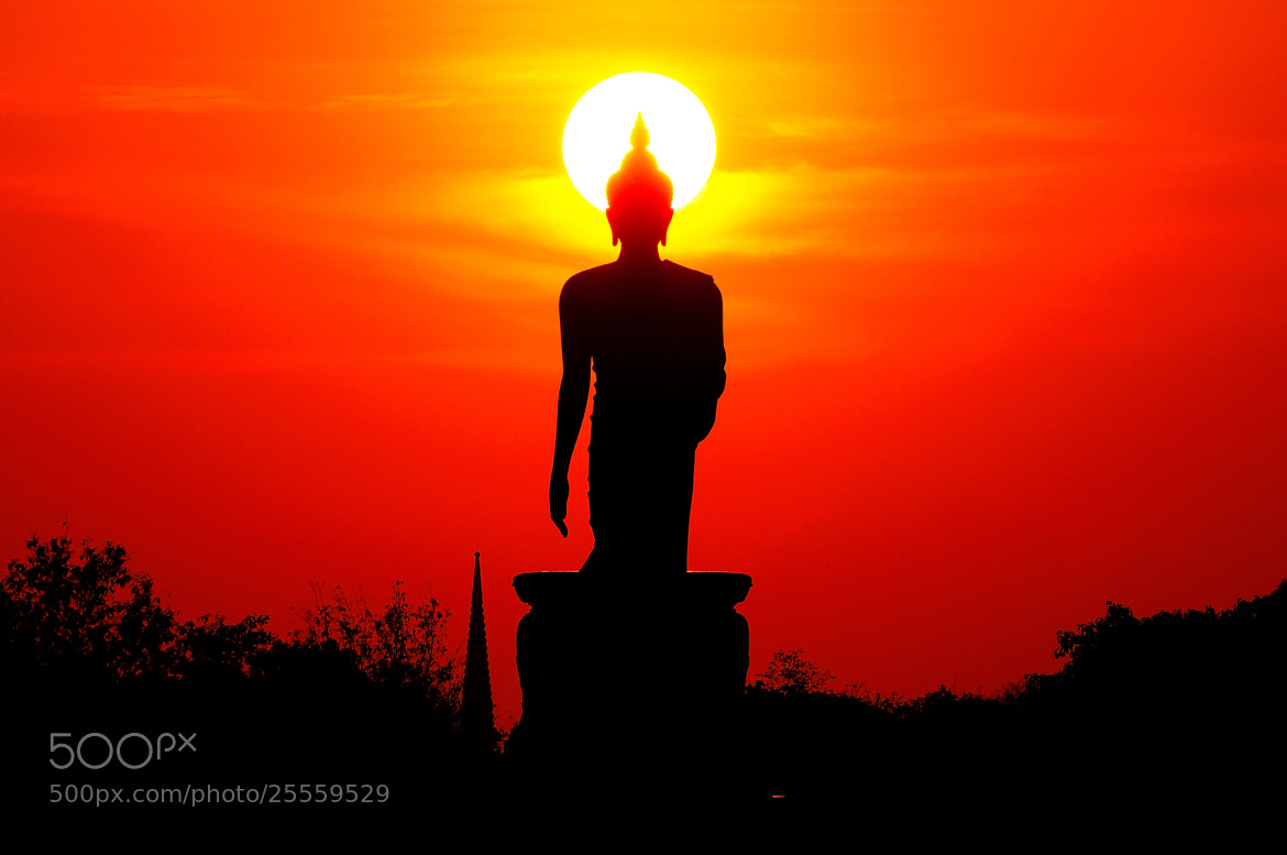 Photograph Shape Of The Buddha by Photos of Thailand .... on 500px