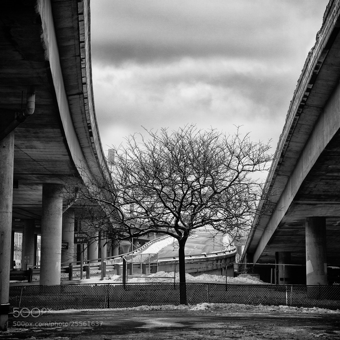 Photograph between the highways by Crazy Ivory on 500px